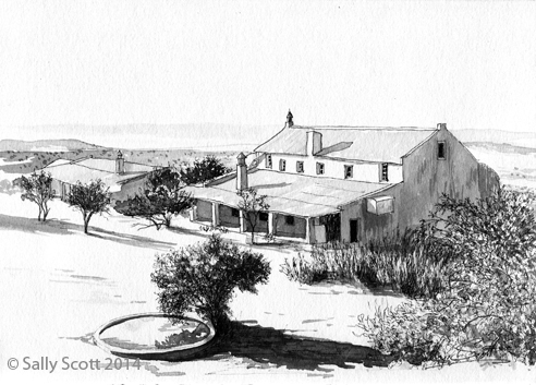 Ink and wash drawing of the rear view of Ann's Villa 2014